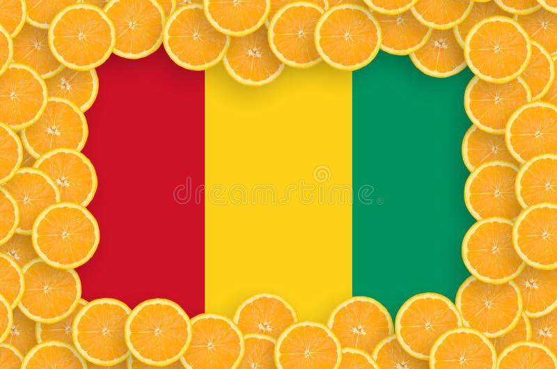 Gwinei flaga w świeżej cytrus owoc plasterków ramie obraz stock