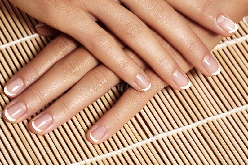 Gwoździe z perfect francuskim manicure'em Opieka dla żeńskich ręk zdjęcie stock