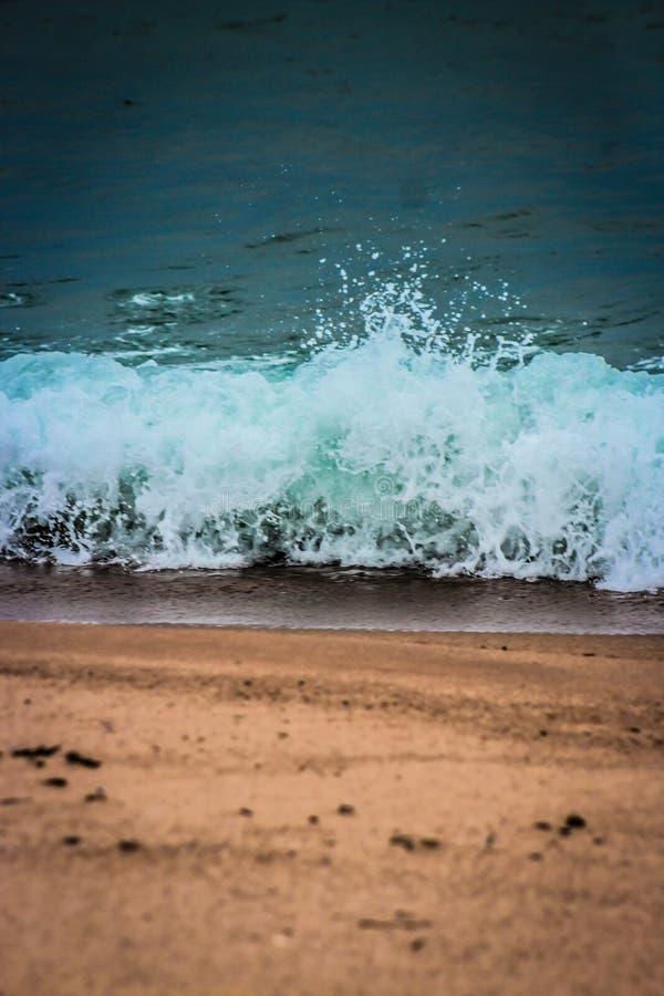 Gyckel på stranden royaltyfria bilder