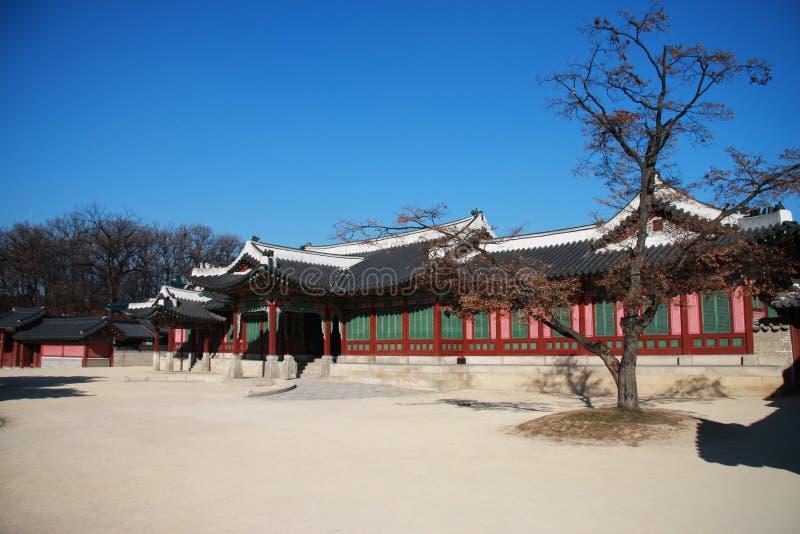 gyeongbokgung fotografia royalty free