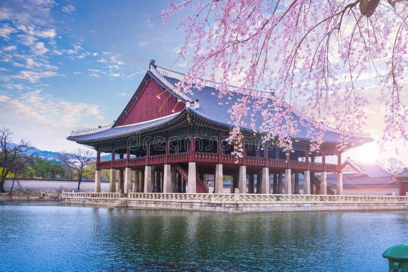 Gyeongbokgung slott i våren, Sydkorea arkivfoto