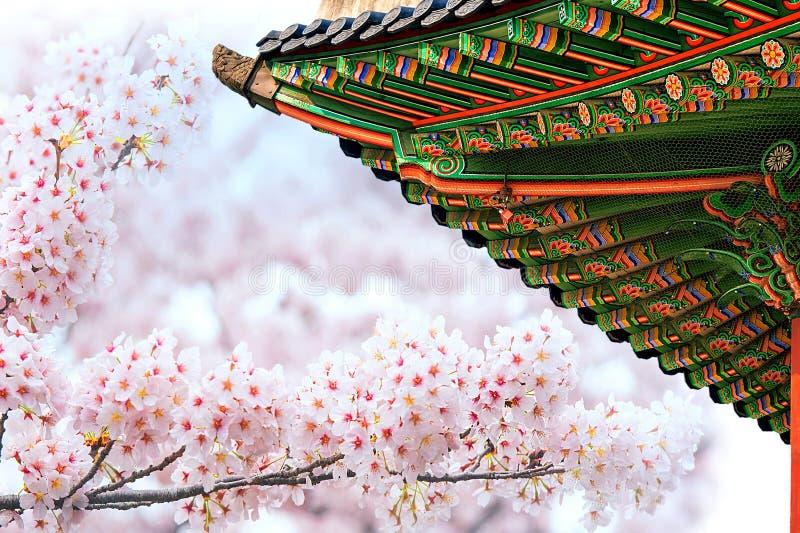 Gyeongbokgungpaleis met kersenbloesem in de lente stock afbeelding