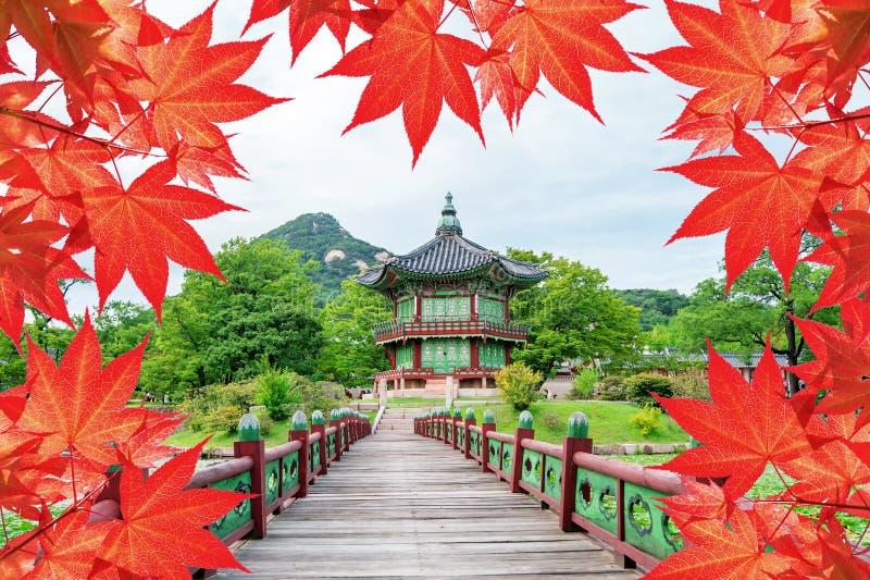 Gyeongbokgungs-Palast mit buntem Herbstlaub in Seoul Korea lizenzfreies stockbild