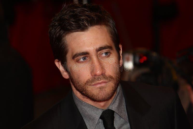 gyllenhaal jake obrazy royalty free