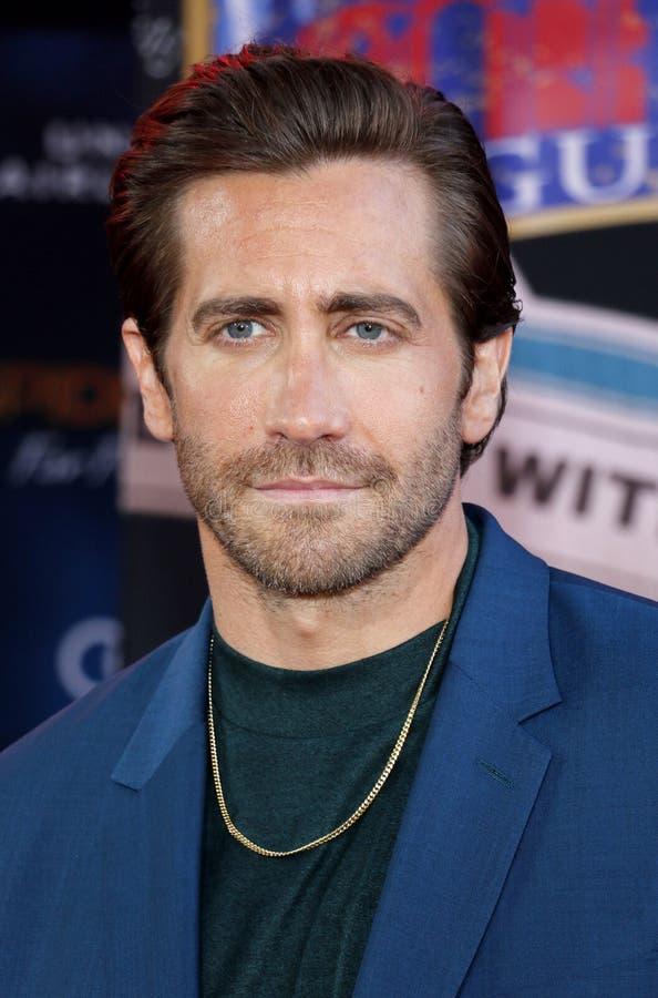 gyllenhaal jake obraz royalty free