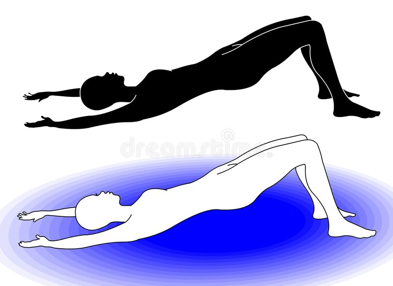 Download Gym 6 stock vector. Image of lying, pilates, muscle, diet - 6586580