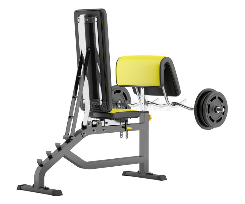 Gym Arm Curl Bench With Barbell Isolated On White Stock Illustration Image 57534265