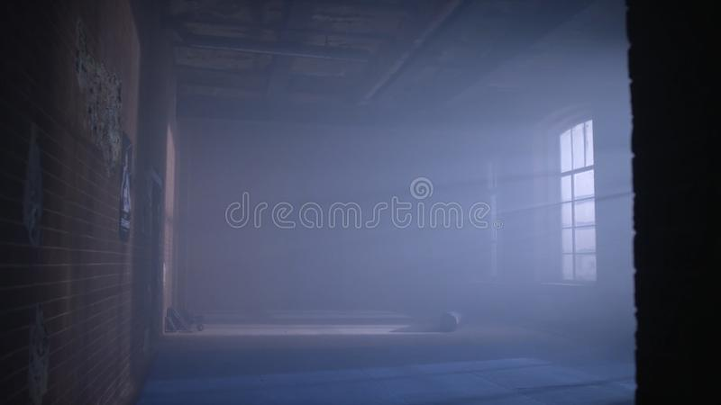 Download Gym In The Basement. Interior Of A Boxing Hall In Loft Style. Empty Wrestling Room. Grunge Gym Interior With Equipment Stock Image - Image of empty, nobody: 101244945