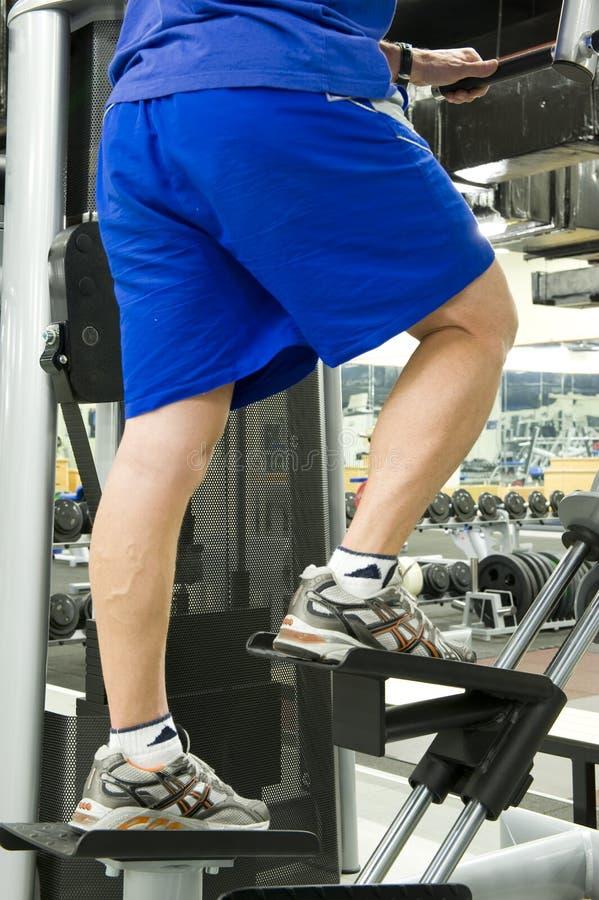 Download Gym equipment stock image. Image of sport, strength, adjustable - 5331447
