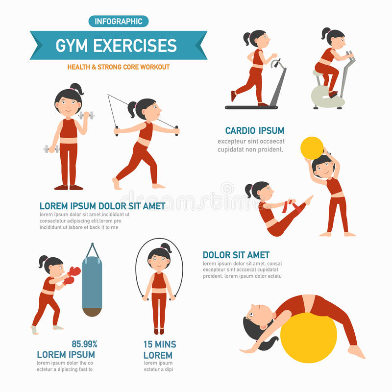 GYM exercise infographics.vector stock illustration
