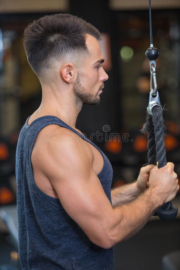 Gym fitness sport fit working out. Man stock photo