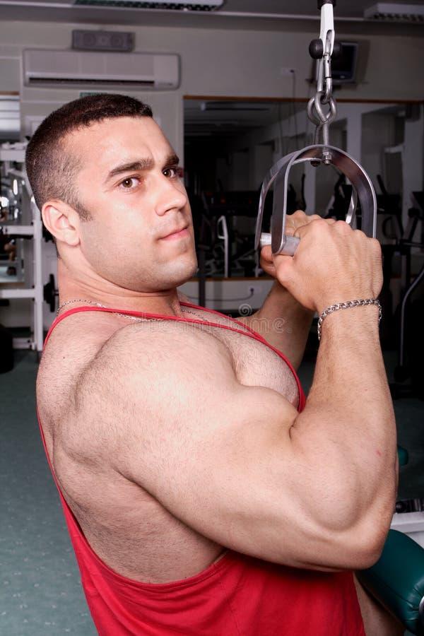 Gym flex royalty free stock photos