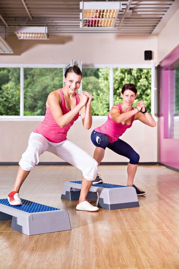 Download Gym girl stock image. Image of exercising, zumba, build - 27181743