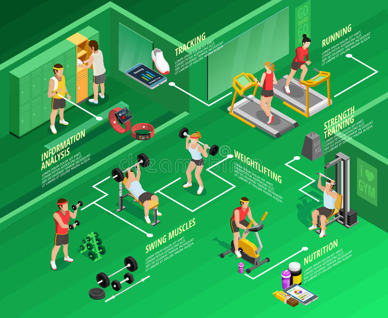 Gym isometric Infographics royalty ilustracja