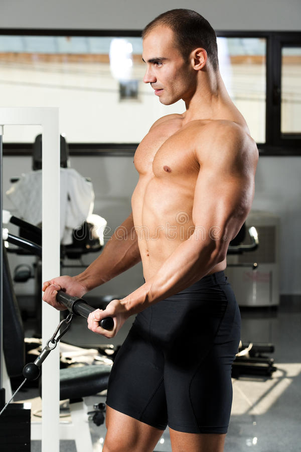 Download Gym Training Stock Images - Image: 17801464