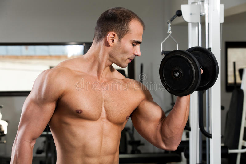 Download Gym training stock photo. Image of stand, athlete, sport - 17801598