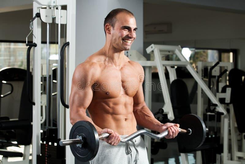 Download Gym training stock image. Image of masculine, bodybuilding - 17801639