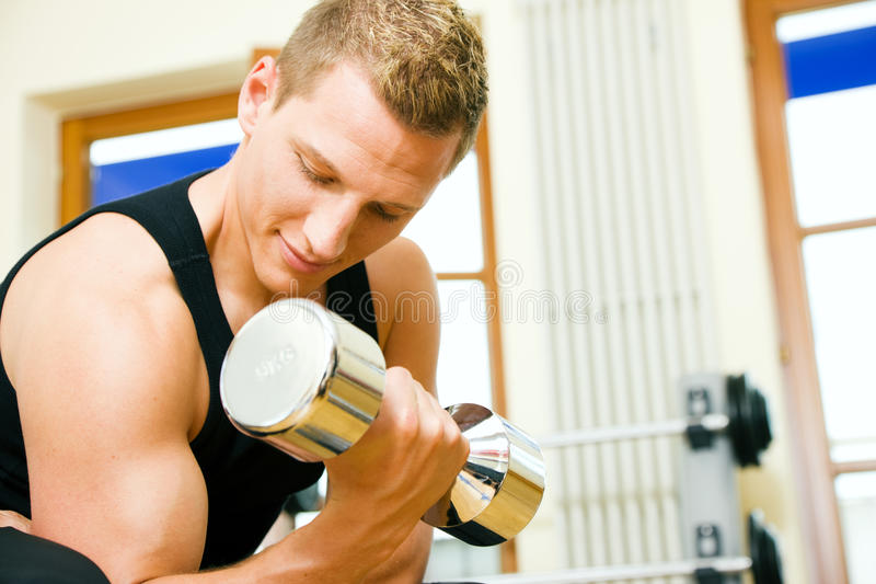Download Gym Training With Dumbbells Stock Photo - Image: 12395152