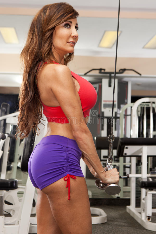 Gym Workout Royalty Free Stock Image