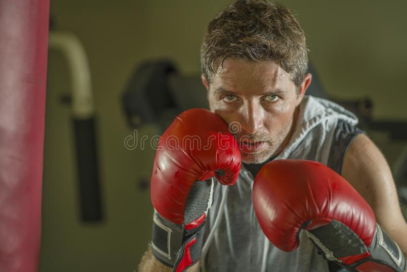 Gym workout portrait of attractive and fierce looking boxer man 30s to 40s in boxing gloves training at fitness club punching stock photography
