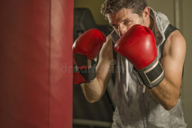 Gym workout portrait of attractive and fierce looking boxer man 30s to 40s in boxing gloves training at fitness club punching royalty free stock photos