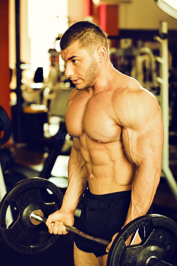 Gymnase de formation de Bodybuilder images libres de droits