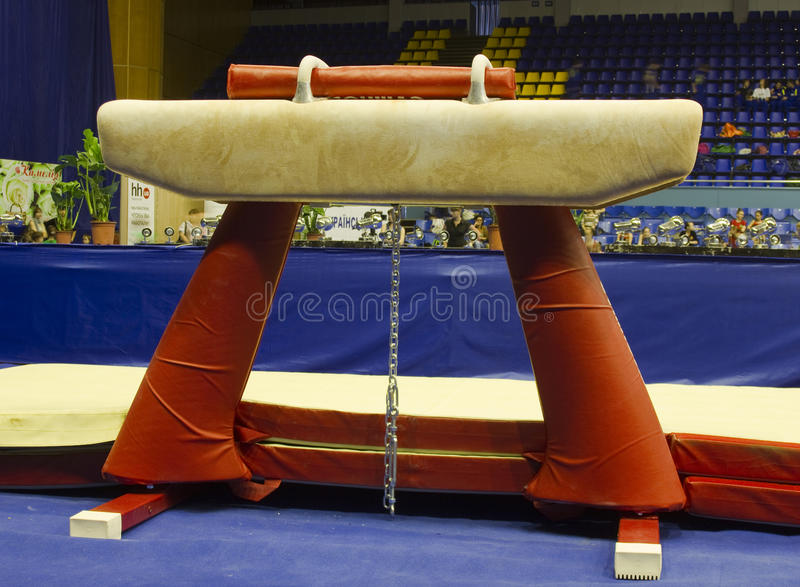 Download Gymnastic horse editorial stock image. Image of background - 23778299