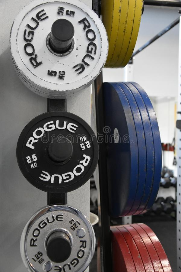 Gymnastiek Rogue Competition Plates Set royalty-vrije stock afbeeldingen