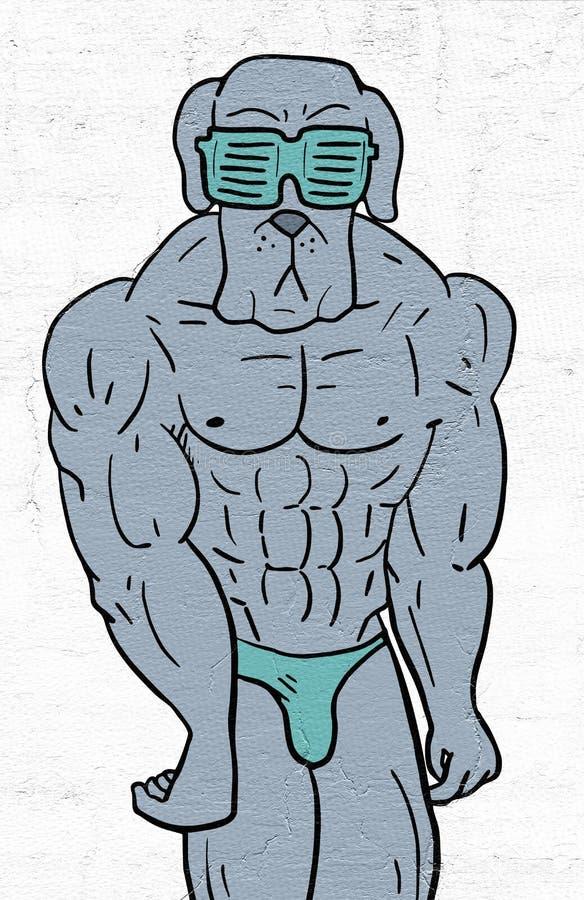 Gymnastiekhond vector illustratie