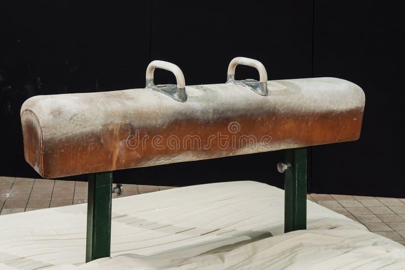 Gymnastisches Knaufpferd lizenzfreie stockfotografie