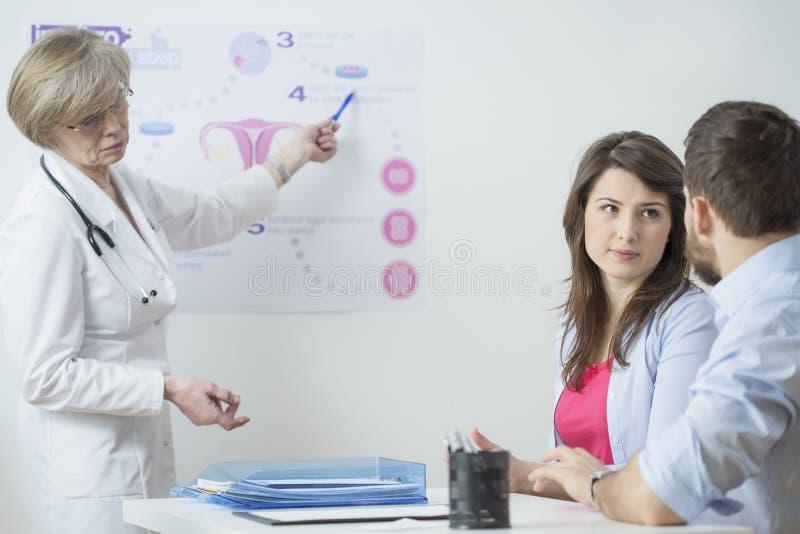 Gynecologist using in vitro scheme. To explain this process stock photo