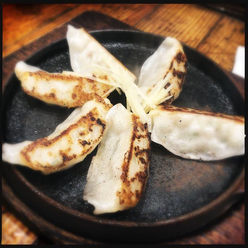 Gyoza dumplings royaltyfri bild