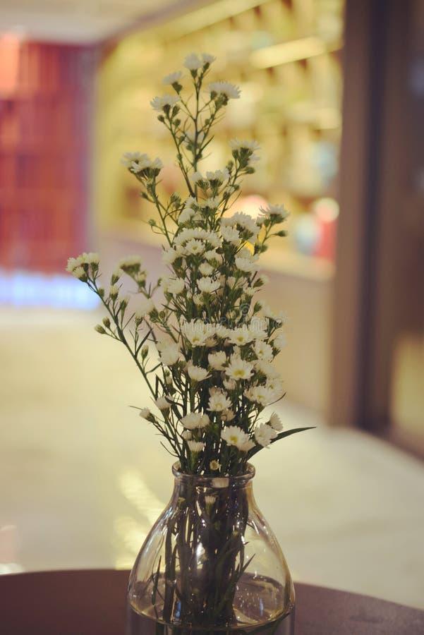 Gypso切削刀在木桌上的玻璃开花 免版税库存图片