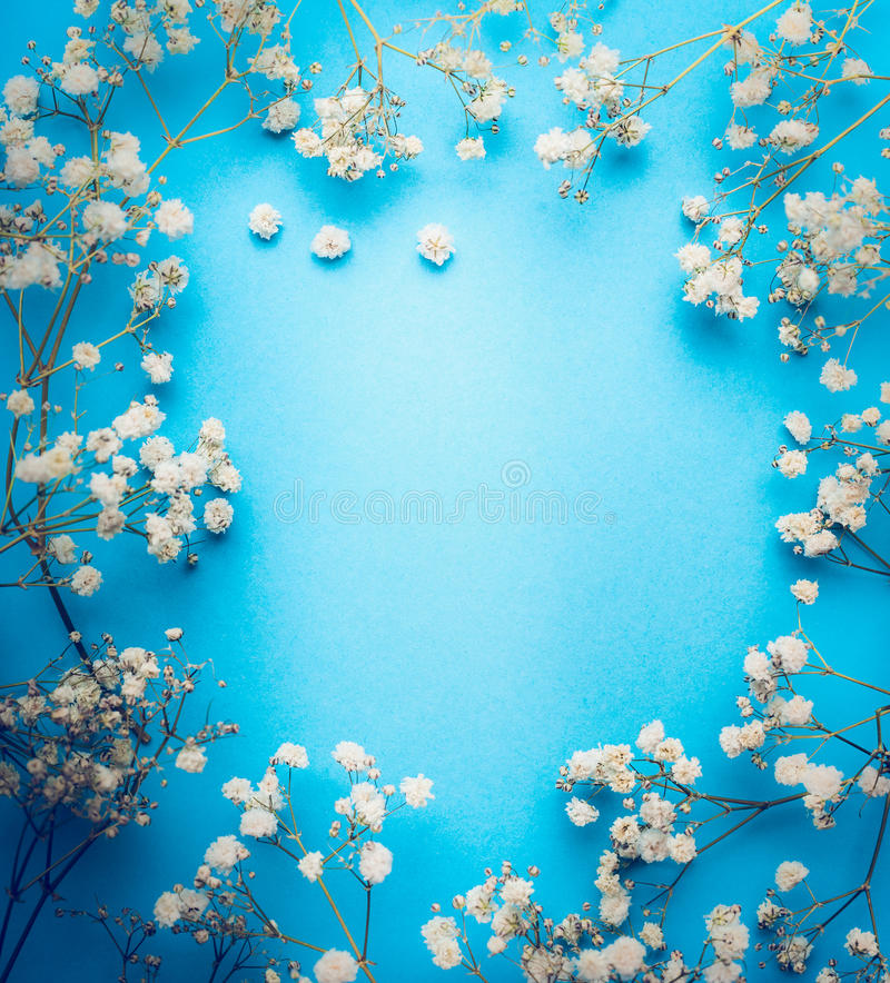 Gypsophila, Baby`s-breath flowers on blue background. White flowers frame, top view stock photos