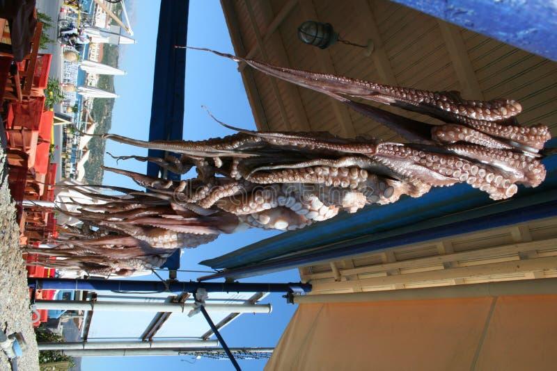 Download Gythion Греции стоковое изображение. изображение насчитывающей рыболовство - 1175977