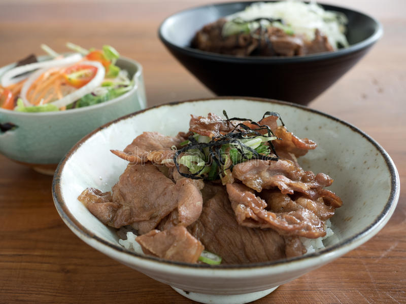 Gyudon and Buta Don: Japanese beef or pork and rice bowls with salad. Closeup of Gyudon and Buta Don: Japanese beef or pork and rice bowls with salad royalty free stock photos
