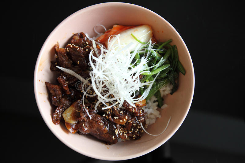 Gyudon ,Japanese beef royalty free stock photography