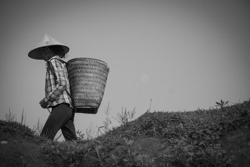 Hà Giang, Vietnam stockfotos