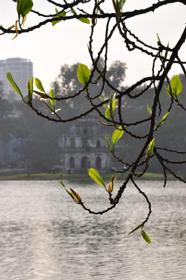 """Há"""" """"¡ m. - Hanoi-Vietnam di GÆ°Æ fotografia stock libera da diritti"""