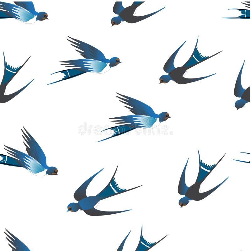 Há andorinhas azuis maravilhosas em um fundo branco ilustração royalty free