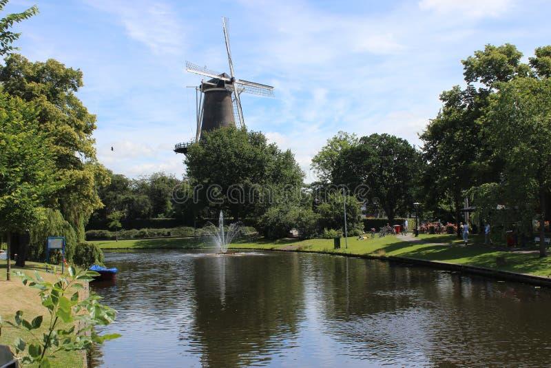 Há apenas algo maravilhoso sobre moinhos de vento! imagem de stock royalty free
