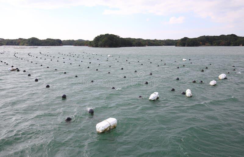 Há a paisagem da ilha da baía e o aqua da pérola que cultivam o cultivo Shima Japan imagem de stock