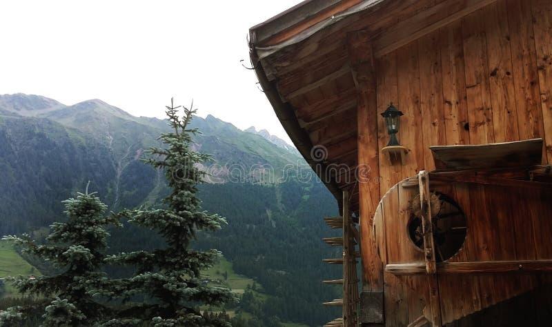 Há uma casa na árvore e árvores em Áustria imagem de stock