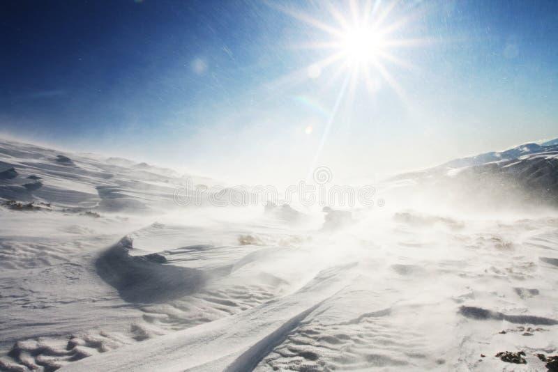 häftig snöstorm royaltyfri foto