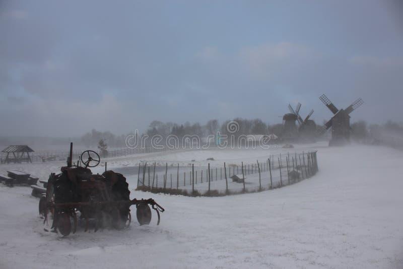 Häftig snöstorm på den estonian ön av Saaremaa royaltyfri bild