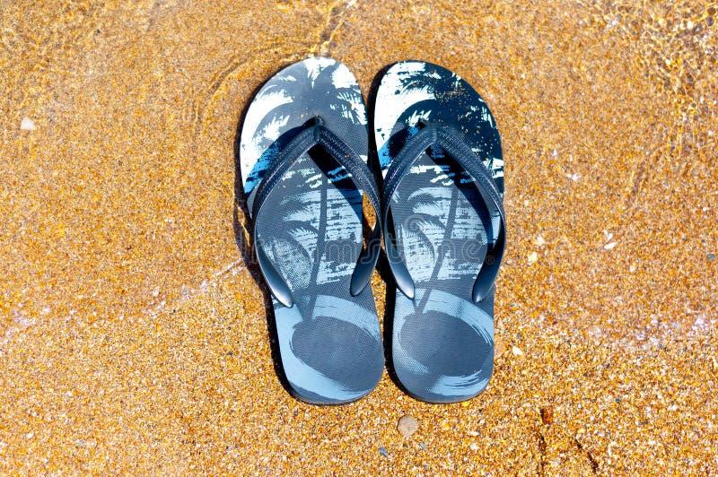 Häftklammermatare på stranden royaltyfria foton