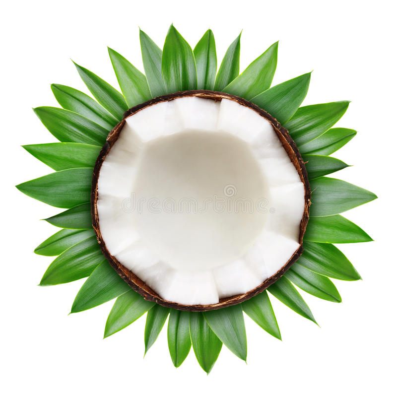 Hälfte der Kokosnuss lokalisiert lizenzfreie stockfotografie
