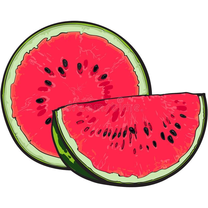 Hälfte und Viertel der reifen roten Wassermelone mit schwarzen Samen vektor abbildung