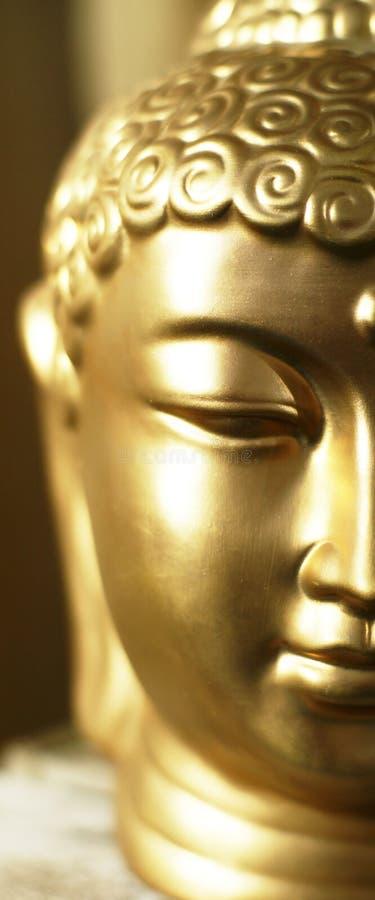 Hälfte von Buddhas Kopf. stockfoto