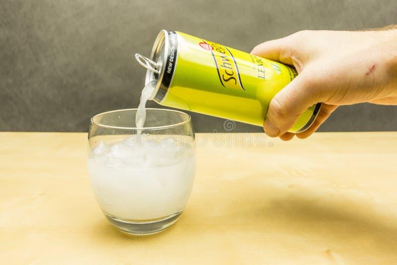 Häll den kolsyrade drinken från ensmaksatte schweppes in i ett exponeringsglas med iskuber royaltyfri bild